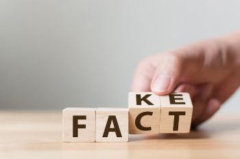 Blocks that spell fake and fact
