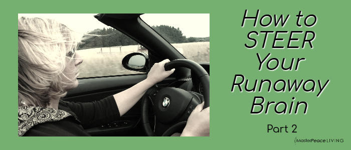 Guide to STEERing Your Runaway Brain, Part 2